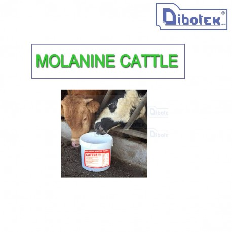 Molamins cattle kg.80