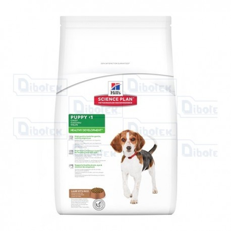 hill's - puppy healthy development kg.1