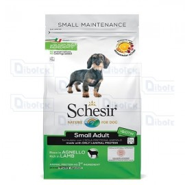 Schesir - Dog Dry Adult Small Agnello Kg.2