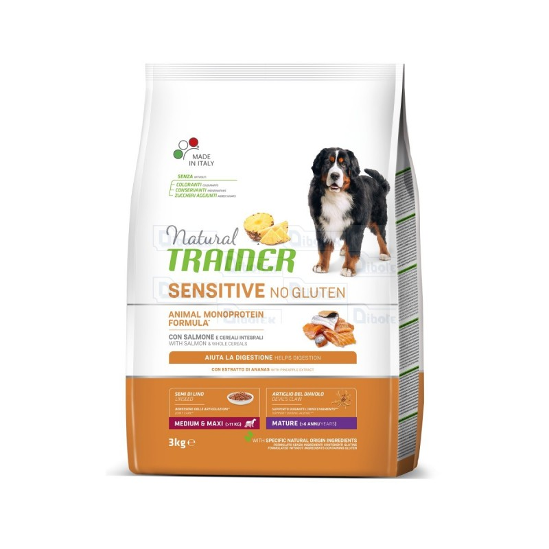 trainer - fitn 3 ad med-max salm 12,5kg