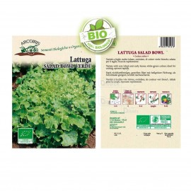 Lattuga Salad Bowl BIO