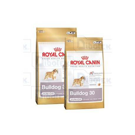 Royal Canin - Bulldog Inglese Junior 12kg