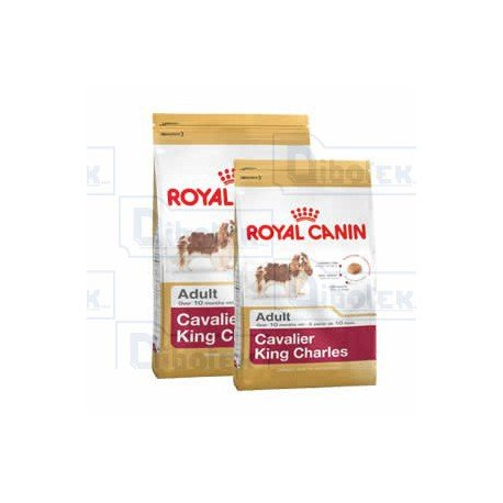 Royal Canin - Nutrizione per Razza - Cavalier King Charles 1,50kg